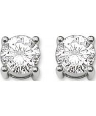 Thomas Sabo H1739-051-14 Ladies brincos de prata com zircônia branca