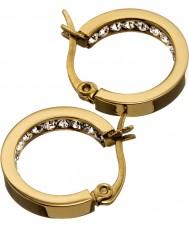 Edblad 41530032 Ladies monaco mini-brincos de ouro